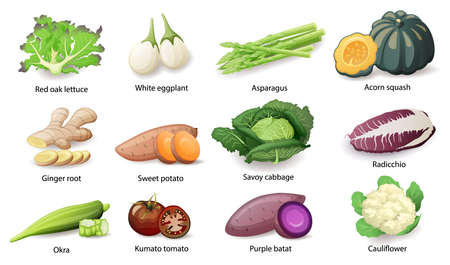 Vegetables with caption titles set, vector flat style illustration.