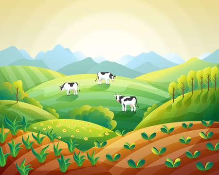 Colorful farm summer landscape, sunrise clear sky with cows on field and fields with emerging crops vector