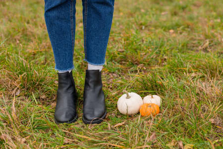 Female legs in boots on autumn grass with orange and white pumpkins. Copy space.