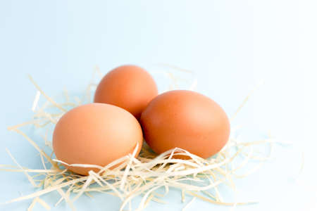 Three Brown Chicken eggs in a Small Nest on the bright blue background. Farm natural products, food or Easter concept. Top view, flat lay
