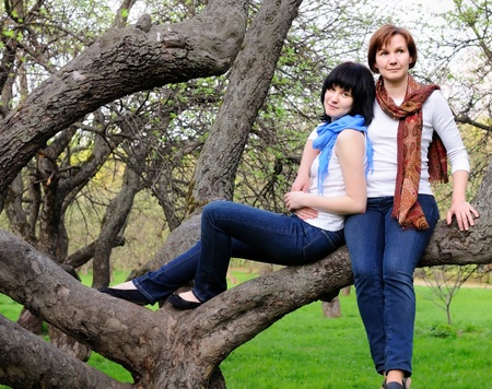Attractive woman and her grown-up daughter sitting on a tree  Stock Photo - 9960220