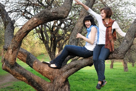Attractive woman and her daughter having fun on a tree  photo