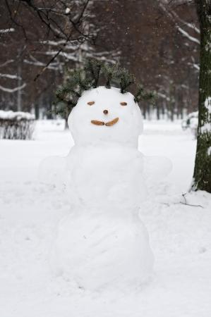 Snowman Stock Photo - 16183157