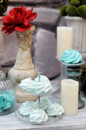 Delicious fancy mint pastila  wedding table set Stock Photo - 18937351