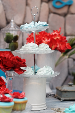 Delicious fancy mint pastila on plate (red and blue wedding table set) Stock Photo - 20270070