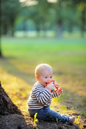 Little baby boy at the sunny park playing with toy photo