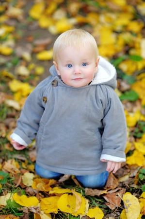 Little baby boy portrait in the autumn park photo