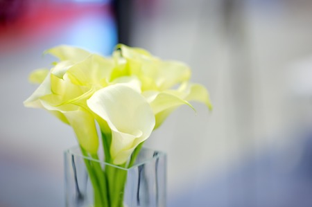 Beautiful flowers bouquet in glass vase photo