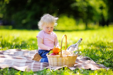 picnic cloth: Beautiful toddler boy having a picnic in sunny summer park Stock Photo