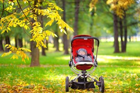 teat: Sweet little baby boy sleeping in stroller in autumn park Stock Photo