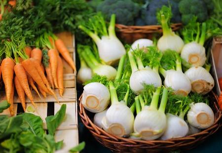 agricultor: Hinojo bio saludable fresca y zanahorias en París agricultor mercado agrícola