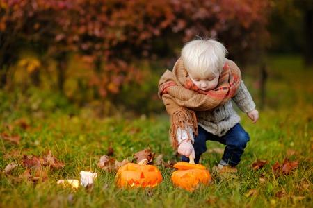 hallowen: Toddler boy playing with jack-o-lantern, hallowen party