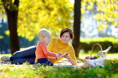 picnic blanket: Beautiful middle aged woman and her adorable little grandson having a picnic in sunny park