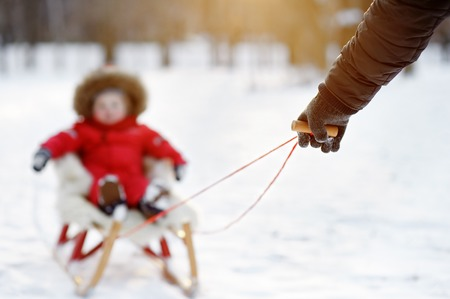 to steer a sledge: Father and his toddler son having fun in winter park, focus on father hand Stock Photo