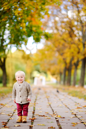 toddler walking: Toddler walking in the park at the autumn. Little boy enjoy sunny day