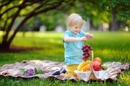 Beautiful little boy having a picnic in summer sunny park. Outdoors leisure time for kids or family. Cute child eating grapes