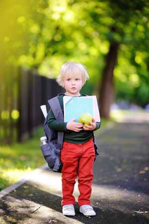 Unhappy little schoolboy on sunny autumn day. Young student with his backpack. Education for small kids. Back to school concept.