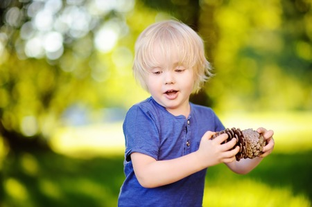 Cute little boy playing with two big pine cones outdoors. Game for kids on the nature.
