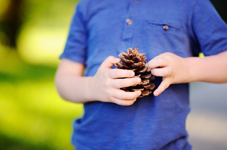 Cute little boy playing with big pine cone outdoors. Game for kids on the nature.