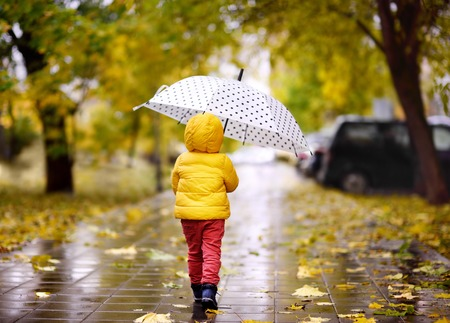 Little child walking in the city park at rainy autumn day. Toddler boy with umbrella for fall weather