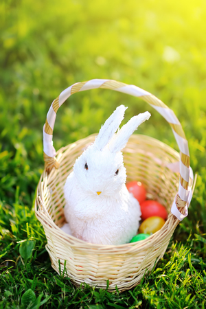 Colorful Easter eggs in a basket with cute white toy bunny. Celebrating Easter outdoors. Accessories for Easter party in park Stock Photo