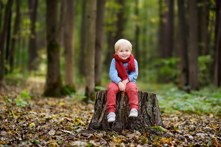 Little boy sitting on wooden stump during stroll in the forest at spring, summer or autumn day. Active family time on nature. Hiking with little kids