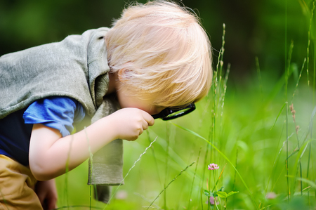Charming kid exploring nature with magnifying glass. Little boy looking at tree with magnifier. Summer activity for inquisitive child Stock Photo