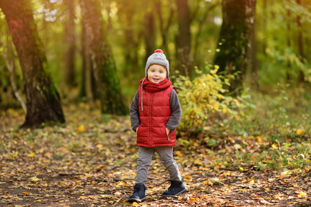 Little boy during stroll in the forest at sunny autumn day. Active family time on nature. Hiking with little kids
