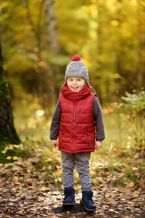 Little boy during stroll in the forest at sunny autumn day. Active family time on nature. Hiking with little kids Stock Photo
