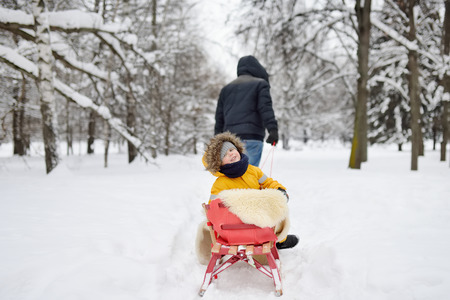 Little child enjoying a sleigh ride. Father sledding his cute son. Family winter activities outdoors.