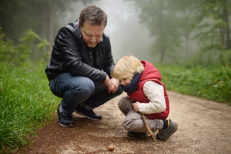 Little boy and his father looking on big snail during hike in forest. Preschooler child explore nature. Developing outdoors activity for kids. Rainy and foggy day in park