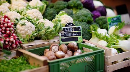 Fresh bio mushrooms and various vegetables on farmer market in Strasbourg, France. Typical European local farmer market