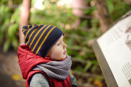 Little boy reads an explanatory sign in the zoo or Park of Nature. Kids exploring nature.