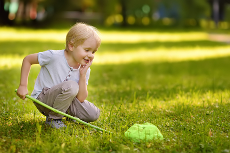Cute little boy catches butterflies with scoop-net on sunny meadow.Study of nature. Young naturalist. Summer activities for inquisitive child.