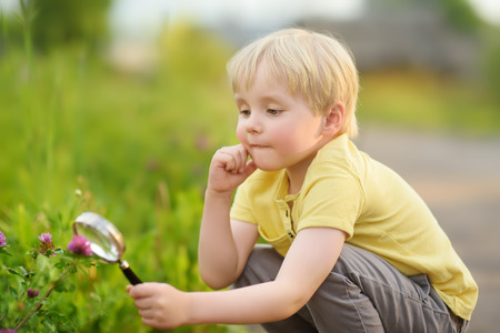 Charming kid exploring nature with magnifying glass. Little boy looking at flower with magnifier. Summer activity for inquisitive child Фото со стока