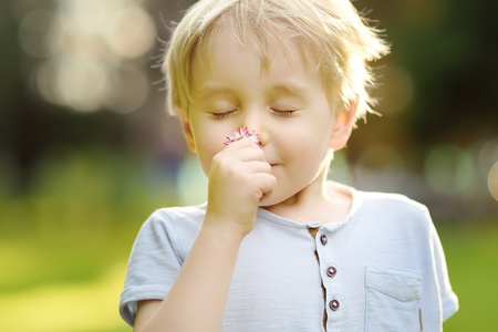 Little boy sniffings a flower. Focus on flower.Study of nature. Young naturalist. Summer activities for inquisitive child.