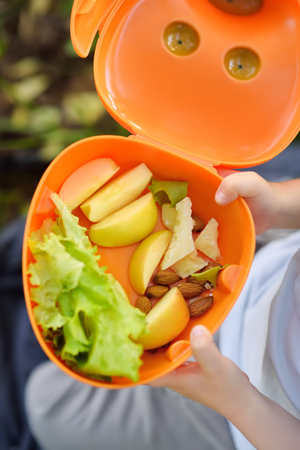Little boy is eating his lunch on the grass in sunny park at summer. Street food for childs. Healthy snacks for kids. Lettuce, apple, nut, cheese. Close up. Stock Photo