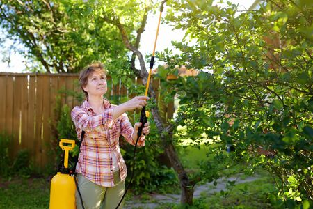 Middle age caucasian woman sprays trees against pests, vermin or diseases plants. Gardening. 写真素材 - 124978798