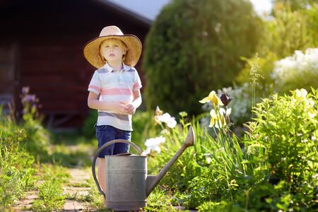 Cute little boy watering plants in the garden at summer sunny day. Mommy little helper