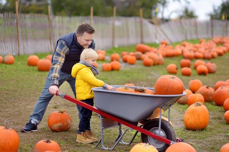 Little boy and his father on a tour of a pumpkin farm at autumn. Child sitting on giant pumpkin. Pumpkin is traditional vegetable used on American holidays - Halloween and Thanksgiving Day.