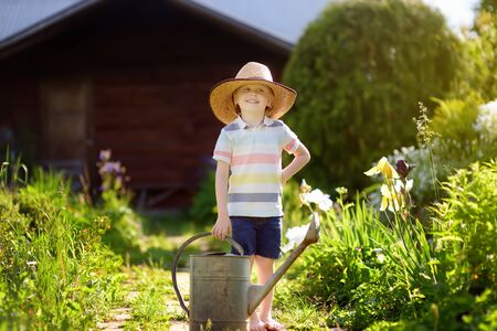 Cute little boy watering plants in the garden at summer sunny day. Mommy little helper Stock Photo - 124979076