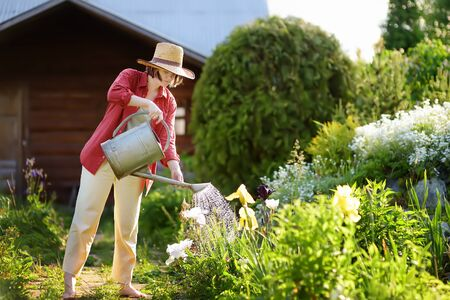 Young woman watering plants in the garden at summer sunny day. Gardening concept