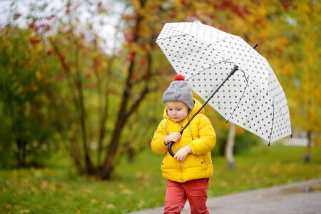 Little child walking in the city park at rainy autumn day. Toddler boy with umbrella for fall weather. Active autumn leisure for kids in the city.