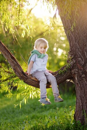 Little boy is sitting on a branch of big tree and is dreaming. Child's games. Active family time on nature. Hiking with little kids.