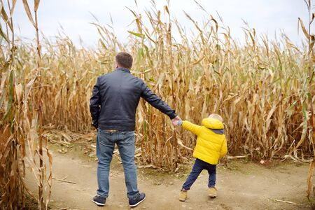 Little boy and his father having fun on pumpkin fair at autumn. Family walking among the dried corn stalks in a corn maze. Daddy and son decide which way to go. Traditional american amusement. Stok Fotoğraf