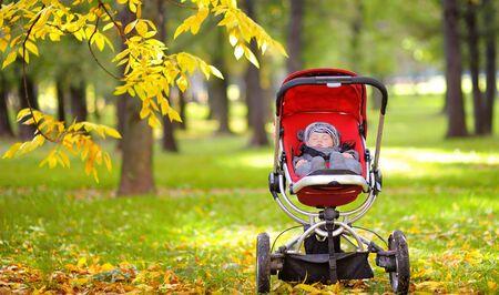 Sweet little baby boy sleeping in stroller in autumn park Zdjęcie Seryjne