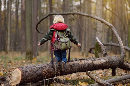 Little boy scout with backpack and rope during hiking in autumn forest. Concepts of adventure, scouting and hiking tourism for kids.