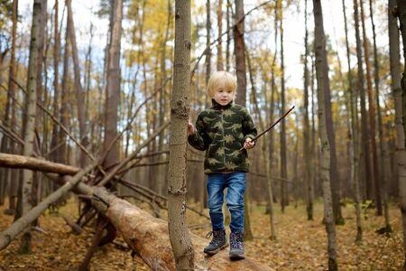 Il ragazzino gioca con il bastone nella foresta il giorno d'autunno. Escursioni per famiglie con bambini.