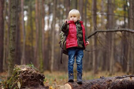 Little boy scout with backpack and flashlight during hiking in autumn forest. Concepts of adventure, scouting and hiking tourism for kids.