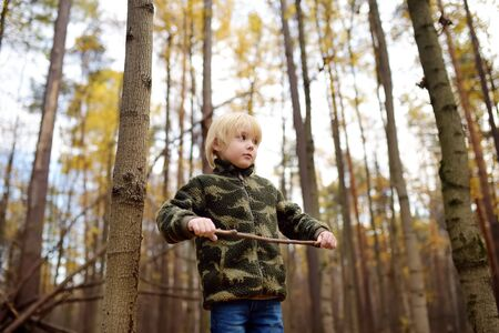 Little boy play with stick in forest on autumn day. Hiking for family with kids. Stock Photo